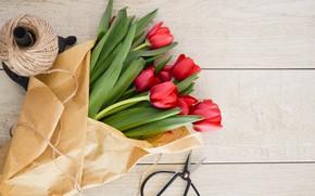 Picture paper, Tulip, Tulips, March 8, scissors, paper, scissors, tulip, Tulips, power, Kraft, March 8, International …