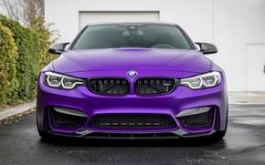 Picture front view, Vorsteiner, 2018, GTS, F82, BMW M4