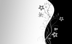 Picture flowers, Wallpaper, pattern, vector, texture, wallpaper, black background, grey background