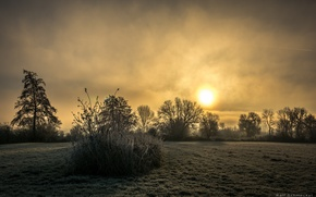 Picture field, sunset, fog