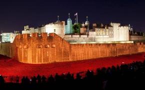 Wallpaper lights, Tower, night, Maki, England, London