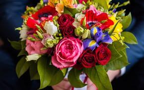 Wallpaper eustoma, irises, roses, bouquet