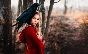 Picture forest, look, Raven, in red, Lisa Swallow, Raven Richard