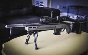 Picture optics, Remington 700, a repeating rifle