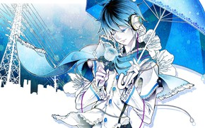Picture rose, umbrella, guy, Vocaloid, Vocaloid, Kaito