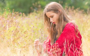Picture grass, girl, mood, meadow