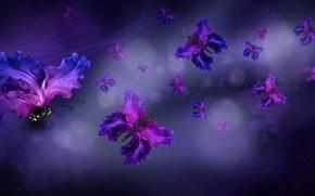 Picture butterfly, petals, water, purple, butterflies, floral