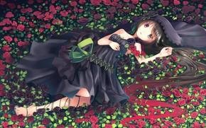 Picture flowers, roses, Girl, anime, art