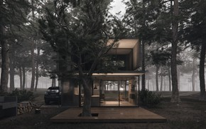 Picture forest, design, wood, car, structure, H3 house