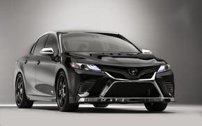 Picture auto, background, black, Toyota