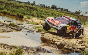 Picture Auto, Sport, Machine, Speed, Race, Peugeot, Lights, Red Bull, 307, Rally, Dakar, Dakar, SUV, Rally, …