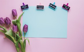 Picture flowers, gift, bouquet, tulips, love, fresh, flowers, romantic, tulips, spring, purple, with love, mother's Day