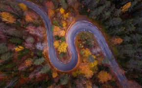 Picture road, autumn, forest, nature, the view from the top