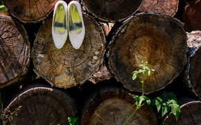 Picture summer, shoes, the bride, logs, Svadba
