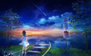 Picture sea, trees, rails, horizon, comet, girl, road sign, starry sky