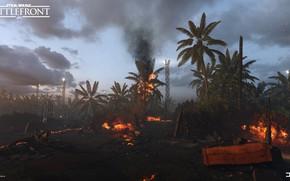 Picture palm trees, fire, fire, Star Wars Battlefront, Scarif Vegetation