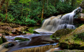 Wallpaper USA, forest, stream, Blackwater Falls State Park, Elakala Falls, trees, waterfall, stones