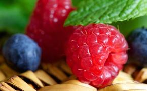 Wallpaper blueberries, food, raspberry, berries
