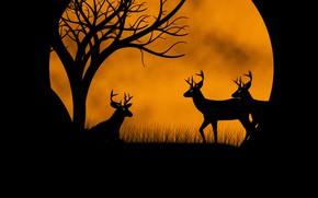 Wallpaper the moon, deer, picture
