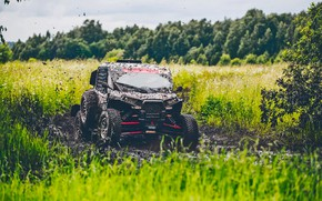 Picture Nature, Grass, Sport, Speed, Race, Dirt, Russia, Rally, Rally, Sport, Overcast, Buggy, Silk road, Silk ...