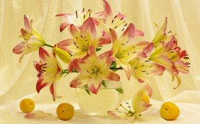 Picture summer, flowers, mood, Lily, beauty, plants, still life, a bunch, apricots, flora, bouquets, July, frukty