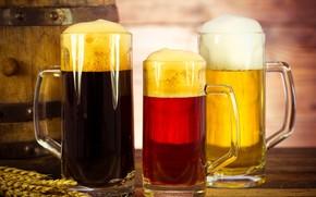 Picture foam, beer, three, ears, mugs, bokeh, barrel