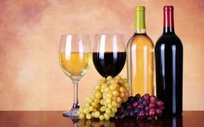 Picture wine, red, white, glasses, grapes, bottle