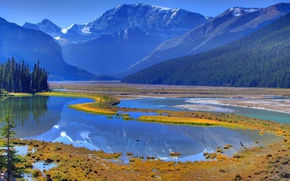 Picture forest, the sky, grass, water, trees, mountains, river