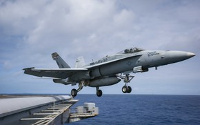 Picture the rise, Super Hornet, carrier-based fighter, FA-18F