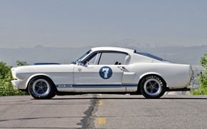Picture Ford Mustang, Classic, 1965, Sexy babe, Shelby GT350R, Old Muscle Car