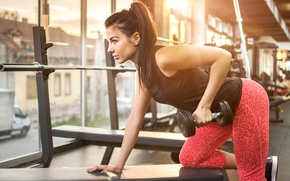 Wallpaper female, fitness, gym, exercises, workout, Dumbbell, pose