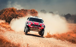 Picture Red, Mini, Dust, Sport, Speed, Race, Rally, SUV, Rally, The front, Flies, X-Raid Team, MINI ...