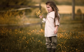 Picture summer, flowers, nature, childhood, mood, hair, village, meadow, girl, shirt, is, a bunch, former, village, …