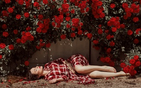 Picture girl, flowers, wall, lies