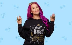Picture look, pose, background, sport, Boss, wrestler, hair, WWE, Boss, Divas, Sasha Banks, Sasha Banks