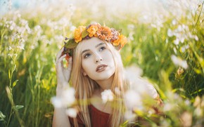 Picture blonde, portrait, wreath, grass, field