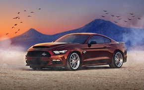 Picture background, Mustang, Ford