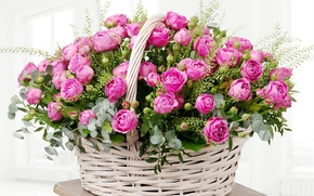 Picture leaves, basket, roses, colorful, gentle, pink, buds, beautiful, Roses, lovely, basket, wicker