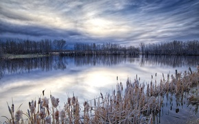 Picture nature, lake, morning