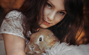 Picture girl, rabbit, brown-eyed