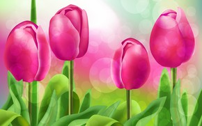 Picture figure, Flowers, tulips, Rendering