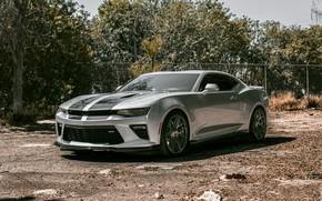 Picture Chevrolet, Camaro, Silver