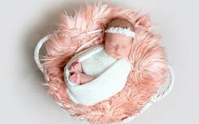 Picture sleeping, girl, fur, basket, baby