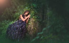 Picture tree, sleep, dress, girl, bokeh, sleeping girl