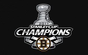 Picture white, yellow, strip, black, bears, white, hockey, black, Boston, 2011, yellow, Boston, lines, NHL, hockey, …