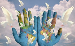 Wallpaper clouds, the world, calm, map, pigeons, palm, no wars