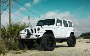 Picture Black, White, Wrangler, Jeep, Wheels