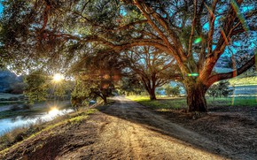 Wallpaper rays, mountains, road, trees, foliage, stream, the sun, HDR, branches, valley