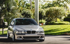 Picture BMW, Green, Front, E39, Silver