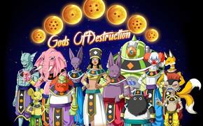Picture game, alien, anime, martial artist, manga, Dragon Ball, strong, Dragon Ball Super, japonese, 009